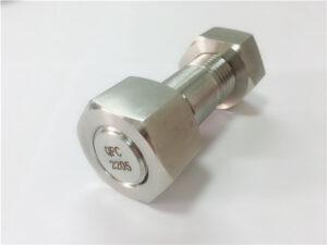 न। -75 - उच्च गुणस्तर डुप्लेक्स २२०5 स्टेनलेस स्टील स्टड बोल्ट